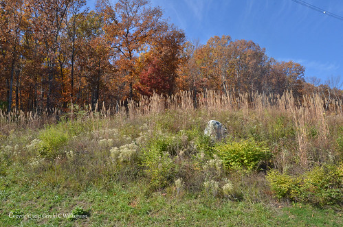Fall colors on Raccoon Mountain near Chattanooga Tennessee
