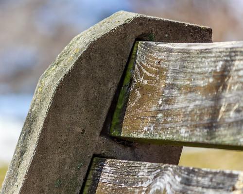 canon bench eos bokeh upstatenewyork 55250 catskillnewyork t5i thomascolenationalhistoricsite