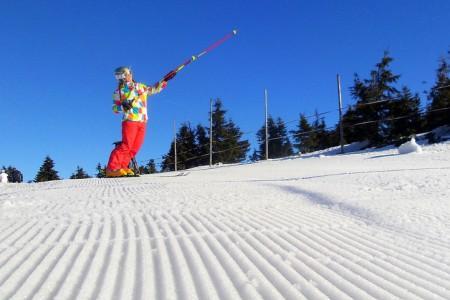 Spokojenost se službami lyžařských středisek - dotazník
