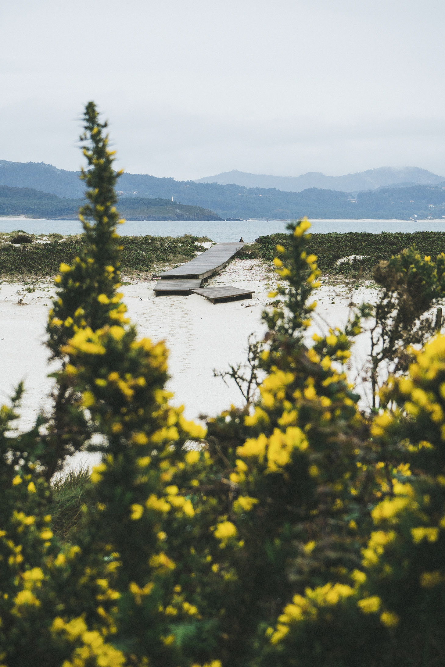 islas_cies2