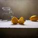 Still Life & Lemons by MargoLuc