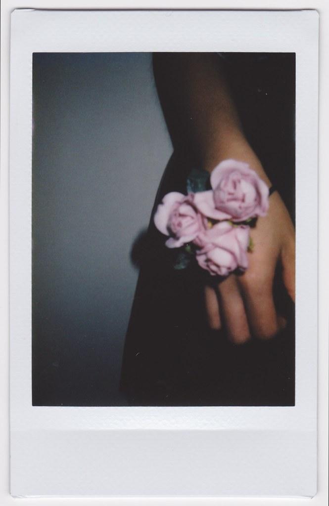 Polaroids 7