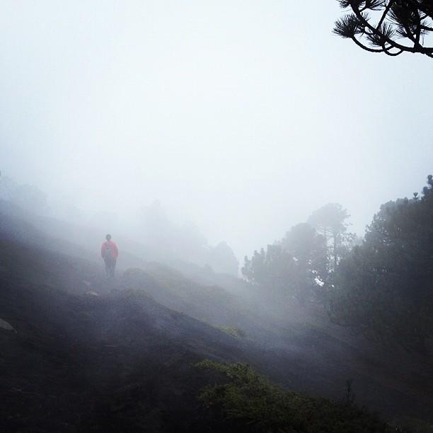 Misty, cloudy, wet. #acatenango #guatemala
