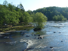 Tyger River from Old Hills Bridge