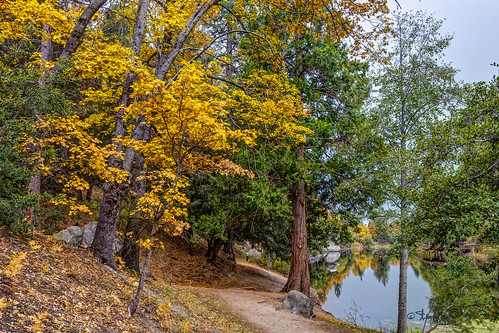 california trees lake landscape unitedstates path fallcolors hemet idyllwild highdynamicrange lakefulmor sdosremedios size2x3 ©stevendosremedios