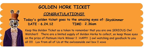 I won a golden Ticket