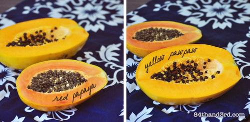 12-06-03_PapayaRicePaperRolls