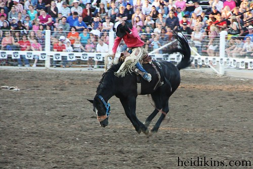 Strawberry Days Rodeo_June 2012 (25)
