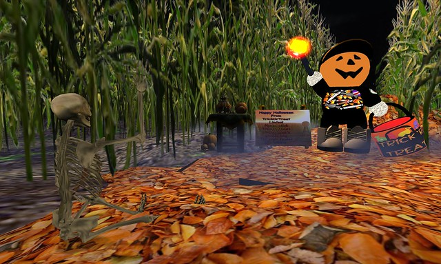 The Corn Field - 07