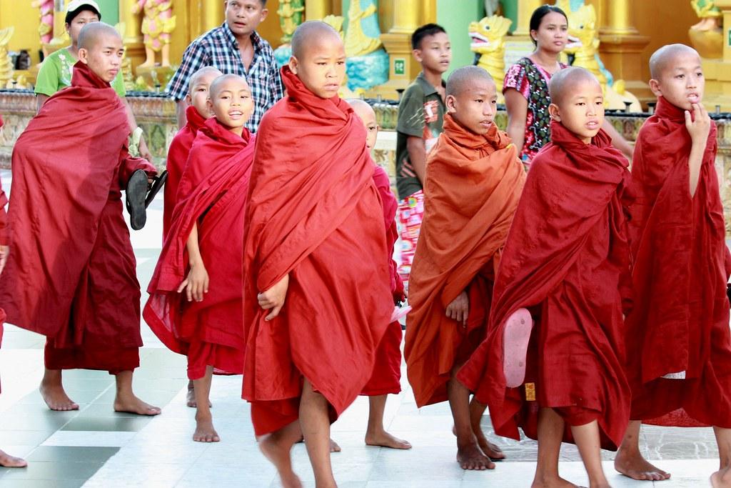 DSC00012/Burma/Yangon/Shwédagon Temple/Novice's Monk