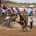 Arizona Cowpunchers Annual Reunion Rodeo