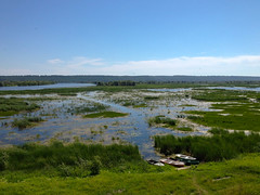 wetland, swamp, estuary, floodplain, prairie, reservoir, river, plain, loch, lake, natural environment, shore, meadow, landscape, wilderness, salt marsh, grassland, pond, bog,