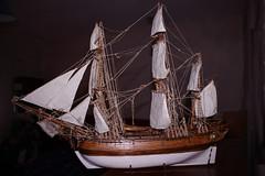 ship of the line(0.0), galley(0.0), longship(0.0), full-rigged ship(0.0), fluyt(0.0), carrack(0.0), lugger(0.0), barquentine(0.0), manila galleon(0.0), cog(0.0), caravel(0.0), barque(0.0), brig(0.0), brigantine(0.0), viking ships(0.0), sailboat(1.0), sailing ship(1.0), schooner(1.0), vehicle(1.0), ship(1.0), mast(1.0), galeas(1.0), sloop-of-war(1.0), tall ship(1.0), watercraft(1.0), boat(1.0), galleon(1.0),