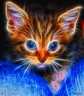 Fractalius cat