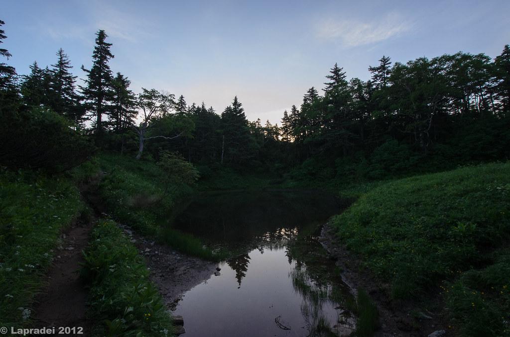 20120730 蝶ヶ池
