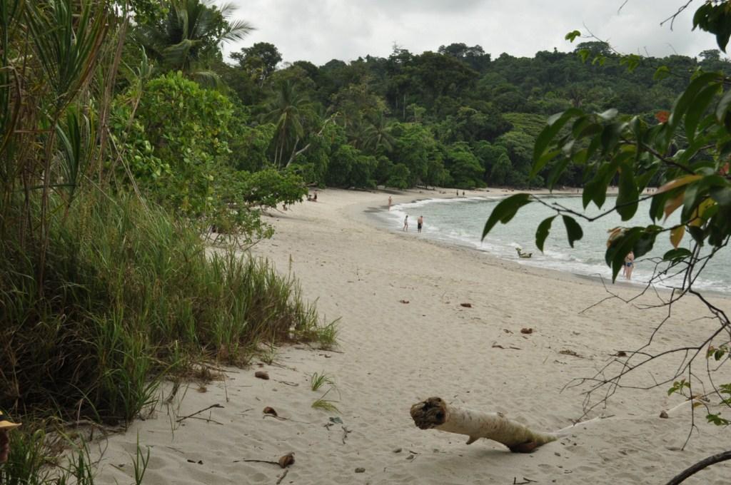 Playas del Parque Nacional de Manuel Antonio en Costa Rica Parque Nacional Manuel Antonio en Costa Rica, el más pequeño y más popular - 7734676206 4ca7b8e80f o - Parque Nacional Manuel Antonio en Costa Rica, el más pequeño y más popular