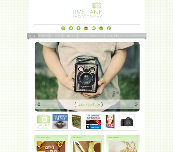 Introducing Lime Lane Photography