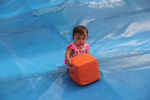 Jovie with an orange block