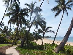 Kihei beach oceanfront condos kihei maui