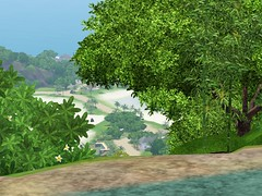 Sunlit Screen.jpg-large