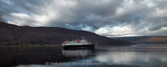 Hebridean Princess 1/2