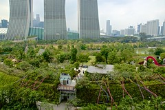Gardens by the Bay with Marina Bay Sands Hotel in Singapore