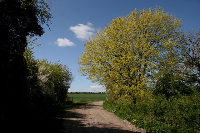 Monarch's Way: Winterbourne Earls