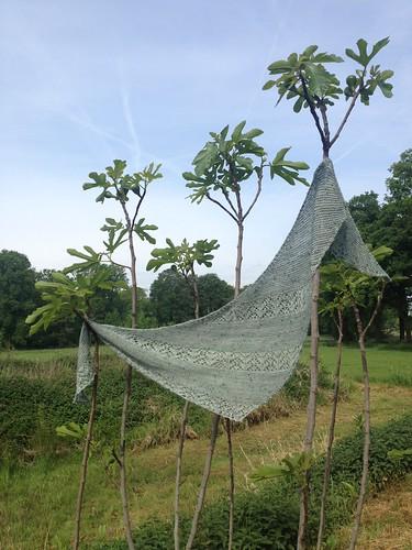 Nurmilintu shawl Dutch Wool Diva yarn