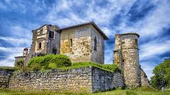 Château de MAGRIN - Photo of Guitalens-L'Albarède