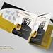 Celebrating Womens Day BiFold Brochure Design