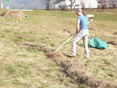 Christiane Lechner raking