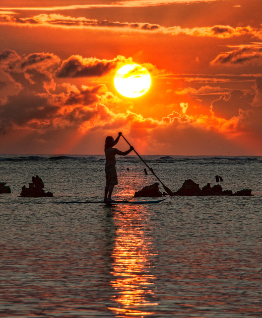 Paddle Board Sunset Beach Shelter Island