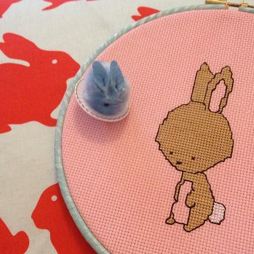 Even more bunnies!