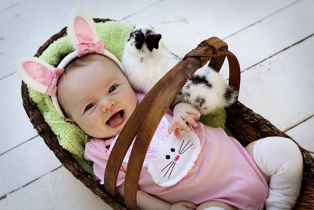 Bunny_Emma(2)