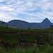 Small photo of Adam's Peak