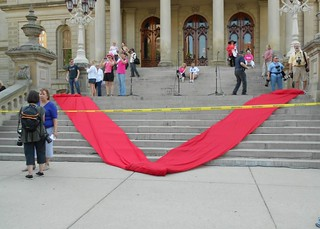 A huge red V for Vagina on the Michigan Capitol steps.
