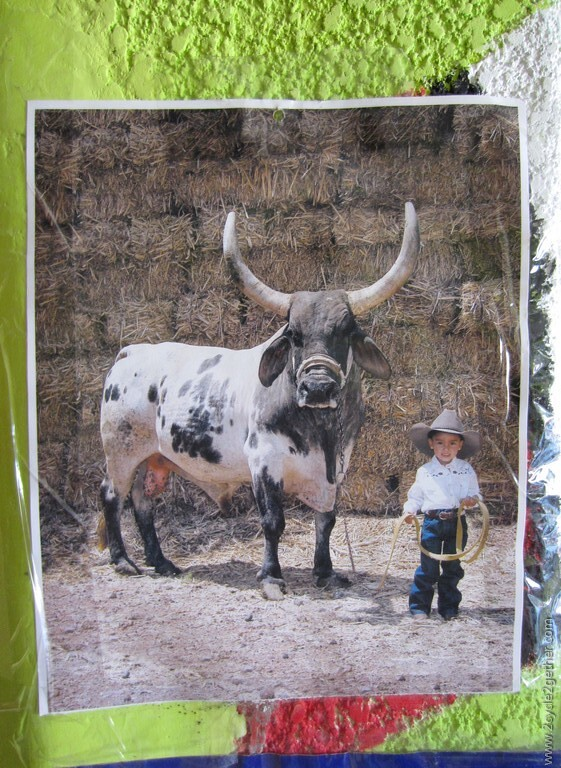 Photo found in Restaurant, 10 miles north of La Paz
