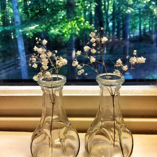 iphone two vases after