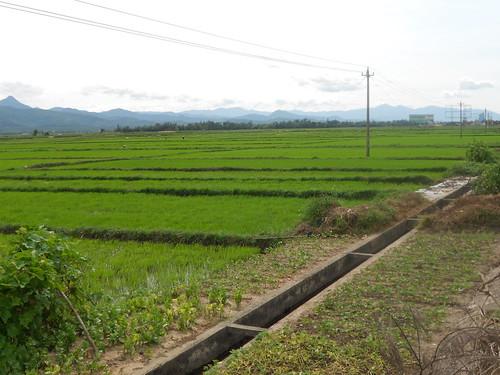 Quang Ninh Countryside