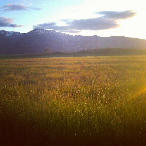 Golden hour in the Wallowas