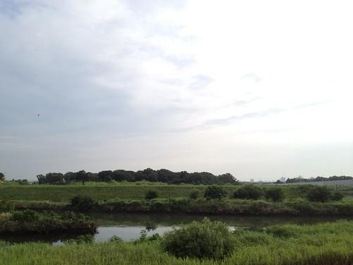黒目川と新河岸川