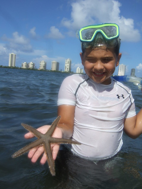 Brandon finds another beaded starfish.