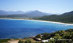 ancutza* ha postato una foto:Corsica -sud spiaggia di Campomoroaltre foto qui:  matrioskadventures.com/2012/07/19/la-spiaggia-di-campomor...