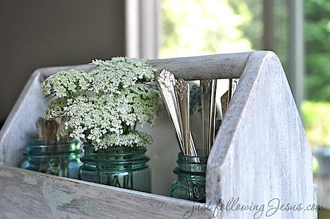 Queen Anne's Lace 4.jpg