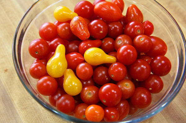 Tomato & Potato Gratin 19