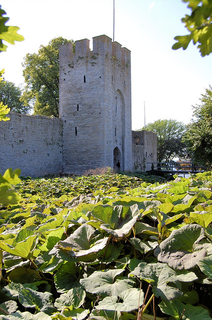 The walls around Visby