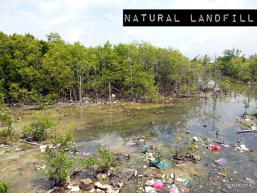 Natural Landfill