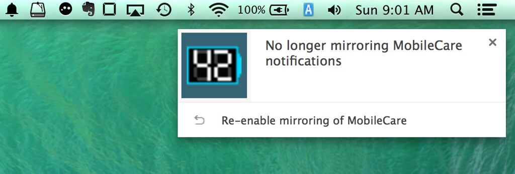 disable_mirror_notification