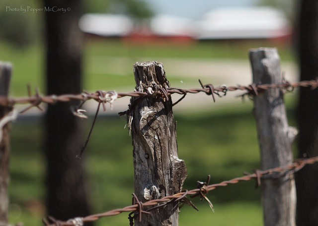 Repair Barbed Wire Fences | Barbed Wire Repairs