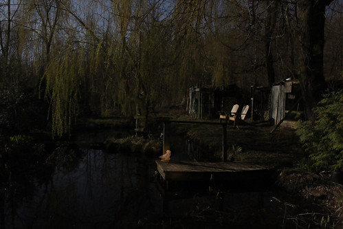 Pond and Chairs by Moonlight